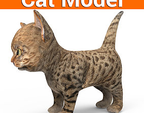 game-ready 3D Tamed Cute Cat