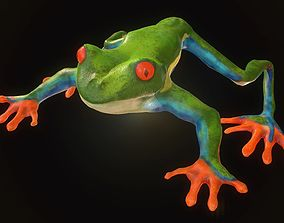 game-ready Low poly tree frog Hylidae amphibian model