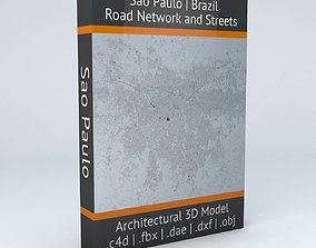 Sao Paulo Road Network and Streets 3D