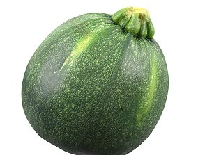 Photorealistic 3D Scanned Round Zucchini game-ready