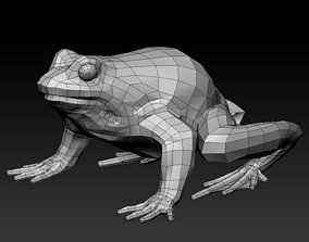 realtime 3D FROG toxic