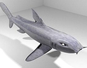 3D model Shark - Bullshark