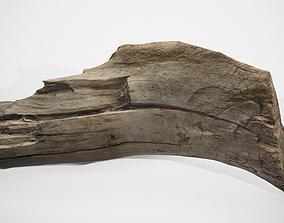 3D model scan wood