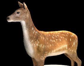Deer 3d model realtime