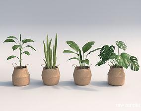 Set Of Big Room Plants 3D