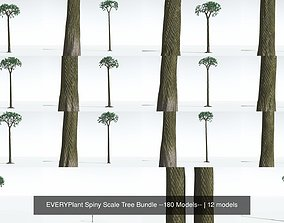 EVERYPlant Spiny Scale Tree Bundle --180 Models-- 3D