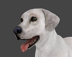 3D model MLAB-001 Animated Dog