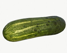 Cucumber 3D model low-poly