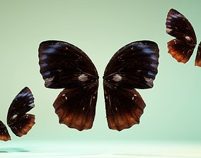 Butterfly The Common Palmfly 3D model
