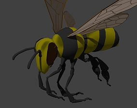 3D Insect Bee or Wasp
