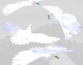 Dove Pigeon 3D model