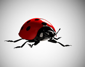 Lady bird lady bug 3D asset