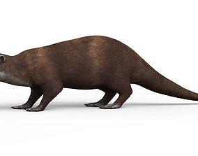 3D asset Otter With PBR Textures