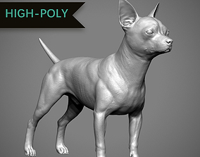 Chihuahua High-Poly 3D printable model