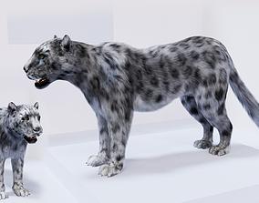 realtime Realistic Fur Leopard 3D Model NO RIG