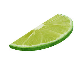 Lime round slice half 3D