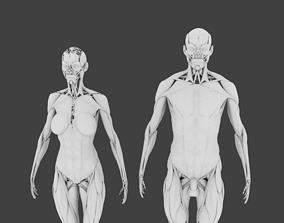3D Human System