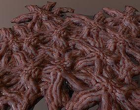 Mutated flesh 3D asset