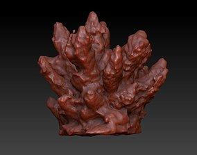 Sea Coral Scan 2 3D model