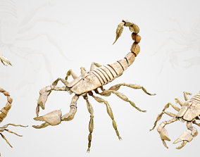 Scorpion 3D asset animated