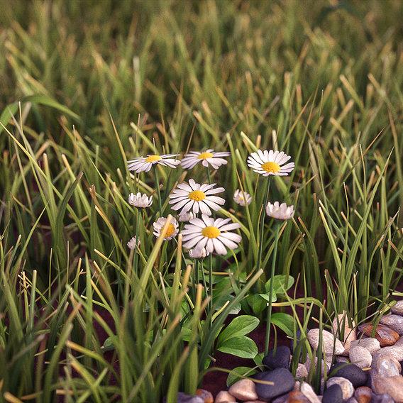 Render training grass