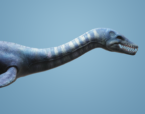 Plesiosaurus with Animation 3D model