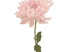 3D Fw29 - Light Pink Flower