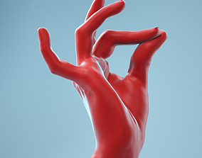 Pinch Gesture Realistic Hand Model 09
