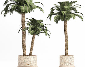 3D model Plants Collection 159 Egyptian Plants