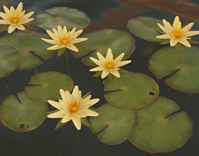 Water Lilies - PBR Game Ready 3D model