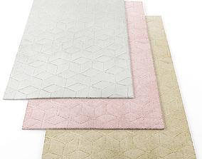 Asiatic Cozy rugs 3D model