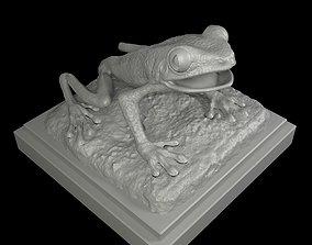 Red eyed Treefrog 3D Print Model
