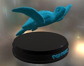 Tortoise 3D printable model realistic