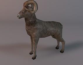 3D model Low poly ram