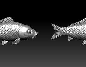 3D model A big carp