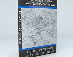 3D Kaliningrad Road Network and Streets
