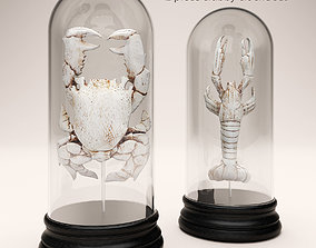 crab and lobster collection 3D