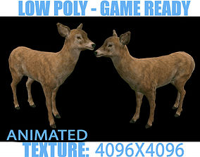 Deer Doe Animated 3D asset