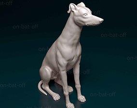 Greyhound 3D print model pet