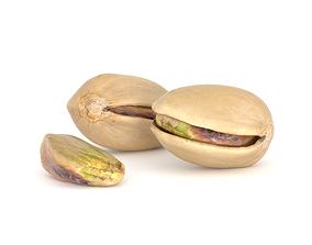 Pistache nut Photoscan 3D Model game-ready