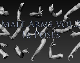 3D Male Arms Vol2 16 Poses