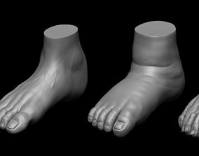 4 different feet with high poly 3D model