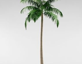 Palm tree 3D flowers