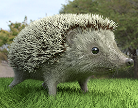 3D animated Hedgehog