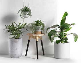 Stool and Pots with Plants 3D