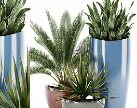 Plants collection 99 Awesomeplanters 3D