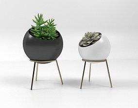 3D Pot and Plant 09