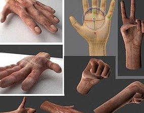 3D asset animated realtime Rigged Hands blender