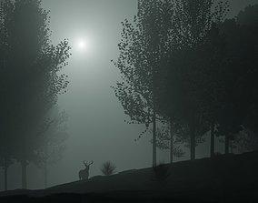 Forest landscape 3D mist
