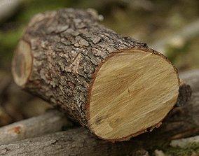 Tree Stump Photogrammetry Retopology 3ds max scene